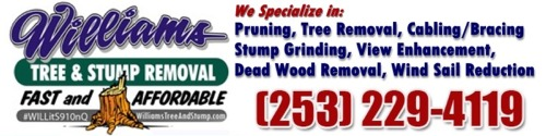 Williams Tree Removal and Stump Grinding Service, Gig Harbor, WA
